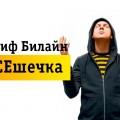 Тариф «Всешечка» от Билайн в Башкортостане и Ставрополе